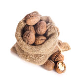 Walnuts in bag Stock Photography