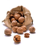 Walnuts and a bag Royalty Free Stock Photography