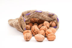 Walnuts in a bag Royalty Free Stock Image