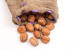 Walnuts in a bag Stock Photos