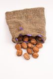 Walnuts in a bag Royalty Free Stock Photography