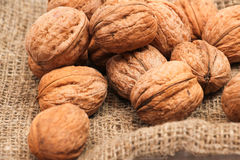 Walnuts in a bag Royalty Free Stock Images