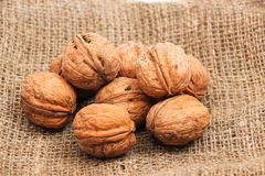 Walnuts in a bag Stock Photography