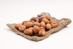 Walnuts in a bag Stock Images
