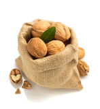 Walnuts in bag on white background Stock Images