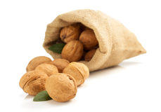 Walnuts in bag on white background Royalty Free Stock Image