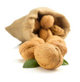 Walnuts in bag on white background Royalty Free Stock Photos