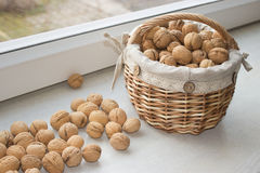 Walnuts in the basket. Close up view of walnuts Royalty Free Stock Images