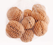 Walnuts in basket. Walnuts in white basket on white isolated background Royalty Free Stock Photo