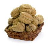 Walnuts in a Basket Stock Image