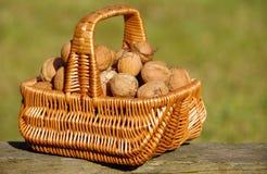 Walnuts In Basket Stock Photo