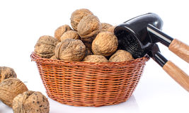 Walnuts in a basket Stock Photos