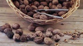 Walnuts Basket stock video