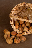 Walnuts Basket - 03 Royalty Free Stock Photography