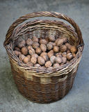 Walnuts in basket Stock Photography