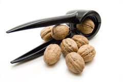Walnuts with black nutcracker Stock Image