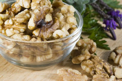 Walnuts in Bowl Royalty Free Stock Photo