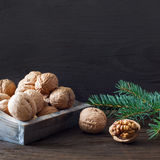 Walnuts in a bowl Royalty Free Stock Photography
