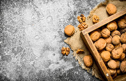 Walnuts in the box. Royalty Free Stock Photography