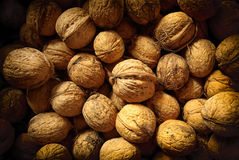 Walnuts. Bunch of walnuts in shells Royalty Free Stock Photo