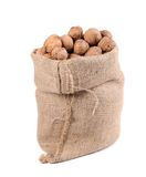 Walnuts in burlap bag. Royalty Free Stock Image