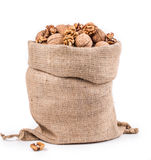 Walnuts in burlap bag. Royalty Free Stock Images