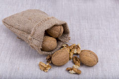 Walnuts in canvas bag Stock Photos