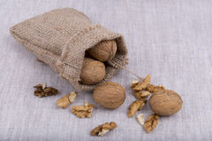 Walnuts in canvas bag Stock Photography