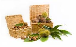 Walnuts, chestnuts, hazelnuts in a wicker basket Stock Photo