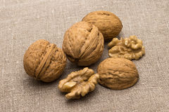 Walnuts and cleaned the whole Stock Image