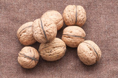 Walnuts close up on the burlap background Royalty Free Stock Images