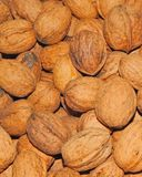 Walnuts close up full frame stock images