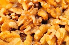 Walnuts. Royalty Free Stock Photo