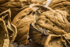 Walnuts - close up shot of shells, marco, cracked Royalty Free Stock Photo
