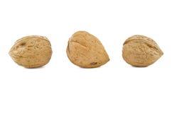 Walnuts. Royalty Free Stock Image