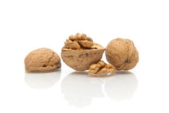 Walnuts close up on white background with reflection Royalty Free Stock Photo