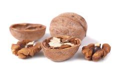 Walnuts closeup Stock Image