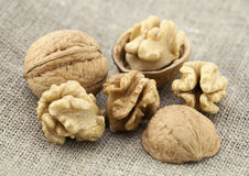 Walnuts closeup Stock Photo