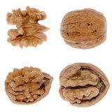 Walnuts in closeup Royalty Free Stock Photo