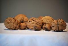 Walnuts closeup Stock Photos
