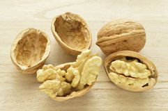 Walnuts in closeup 4 Stock Images