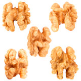Walnuts in closeup isolated on white background. Nut macro. Walnut on white background isolated on white background as package design element royalty free stock photos