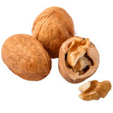 Walnuts in closeup on white background. Isolated walnut on white background stock photography