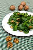 Walnuts and corn lettuce Stock Images