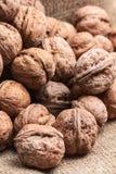 Walnuts on craft loft cloth. Lots of walnuts on craft loft cloth Stock Photography