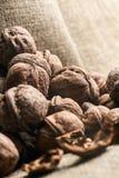 Walnuts on craft loft cloth. Lots of walnuts on craft loft cloth Stock Photos
