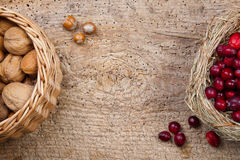 Walnuts and cranberries Royalty Free Stock Images
