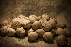 Walnuts crop Royalty Free Stock Photography