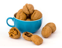 Walnuts in cup. On white background Royalty Free Stock Images