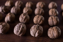 Walnuts on a dark background, conceptual photography. Walnuts lie in a row in a heap stock photography